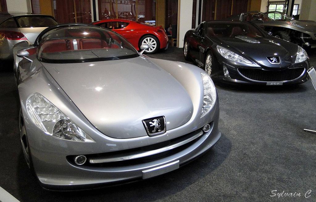 Peugeot 607 Féline - Exposition 30 ans de concept-cars