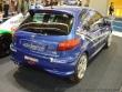 Peugeot 206 RC Groupe N - Mondial de l'auto Paris 2002