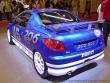 Mondial_auto_Paris_2004_212