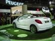 Peugeot 207 epure - Mondial de l'auto Paris 2006